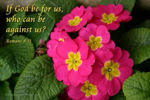If God be for us, who can be against us? - Romans 8:31