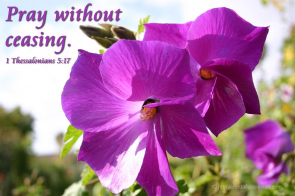 Pray without ceasing. - 1 Thessalonians 5:17