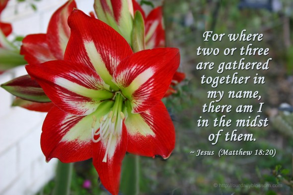 For where two or three are gathered together in my name, there am I in the midst of them. ~ Jesus (Matthew 18:20)