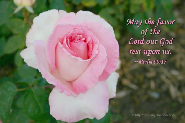 May the favor of the Lord our God rest upon us. ~ Psalm 90:17