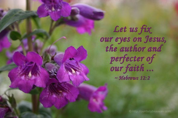 Let us fix our eyes on Jesus, the author and perfecter of our faith... ~ Hebrews 12:2