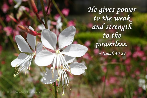 He gives power to the weak and strength to the powerless. ~ Isaiah 40:29
