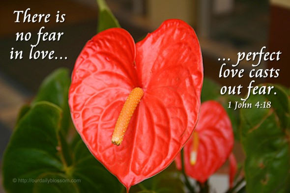 There is no fear in love... perfect love casts out fear. 1 John 4:18
