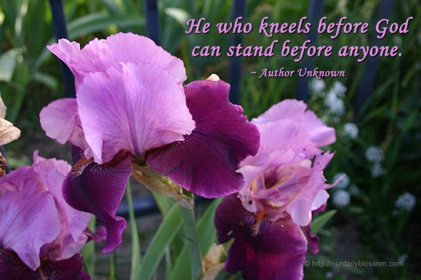 He who kneels before God can stand before anyone. ~ Author Unknown