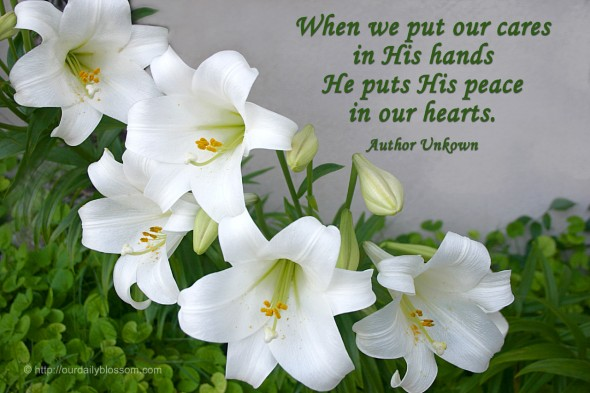 When we put our cares in His hands, He puts His peace in our hearts. ~ Author Unknown