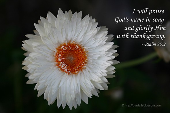 I will praise God's name in song and glorify him with thanksgiving. ~ Psalm 95:2
