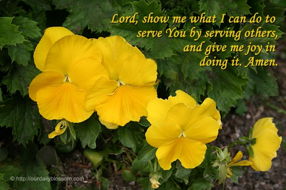 Lord, show me what I can do to serve You by serving others, and give me joy in doing it. Amen.