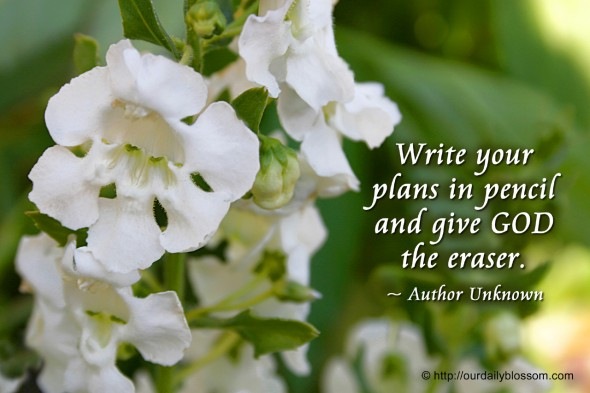 Write your plans in pencil and give GOD the eraser. ~ Author Unknown
