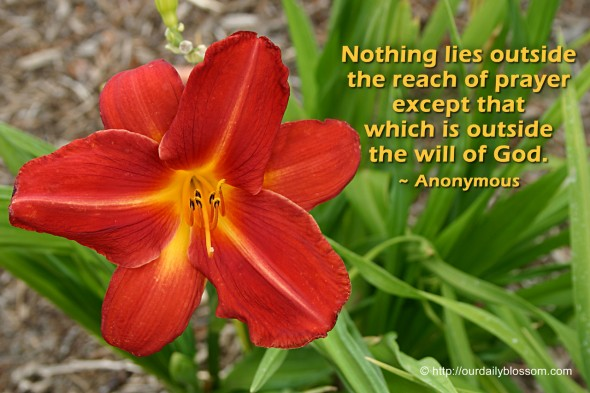 Nothing lies outside the reach of prayer except that which is outside the will of God. ~ Anonymous