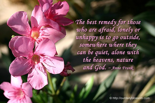The best remedy for those who are afraid, lonely or unhappy is to go outside, somewhere where they can be quiet, alone with the heavens, nature and God. ~ Anne Frank