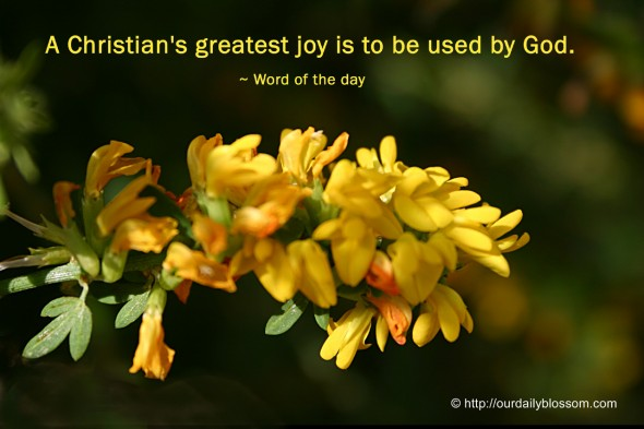 A Christian's greatest joy is to be used by God. ~ Word of the day