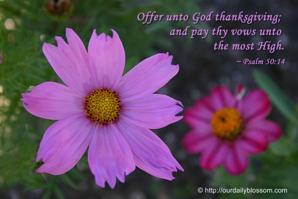 Offer unto God thanksgiving; and pay thy vows unto the most High. ~ Psalm 50:14