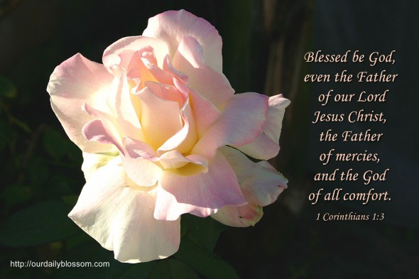 Blessed be God, even the Father of our Lord Jesus Christ, the Father of mercies, and the God of all comfort. ~ 1 Corinthians 1:3