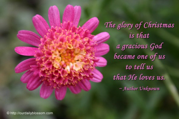 The glory of Christmas is that a gracious God became one of us to tell us that He loves us. ~ Author Unknown