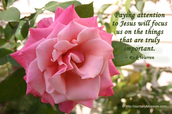 Paying attention to Jesus will focus us on the things that are truly important. ~ Rick Warren