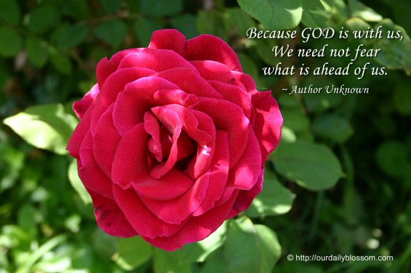 Because GOD is with us, we need not fear what is ahead of us. ~ Author Unknown
