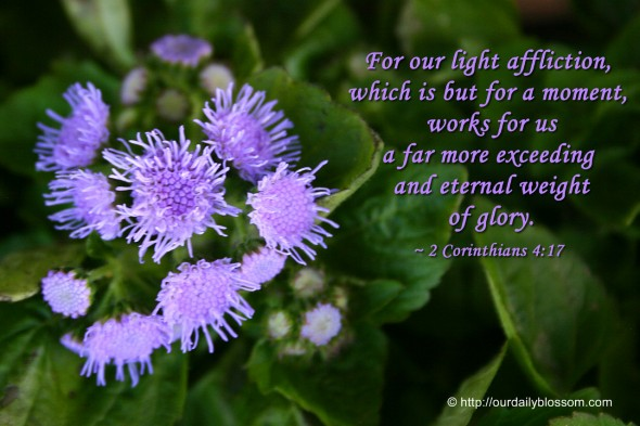 For our light affliction, which is but for a moment, works for us a far more exceeding and eternal weight of glory. ~ 2 Corinthians 4:17