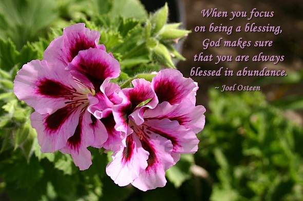 When you focus on being a blessing, God makes sure that you are always blessed in abundance. ~ Joel Osteen