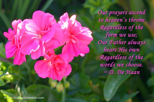 Our prayers ascend to heaven's throne regardless of the form we use; Our Father always hears His own regardless of the words we choose. ~ D. De Haan