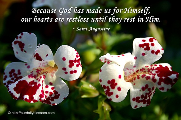 Because God has made us for Himself, our hearts are restless until they rest in Him. ~ Saint Augustine