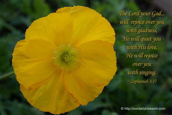 The Lord your God... will rejoice over you with gladness, He will quiet you with His love, He will rejoice over you with singing. ~ Zephaniah 3:17