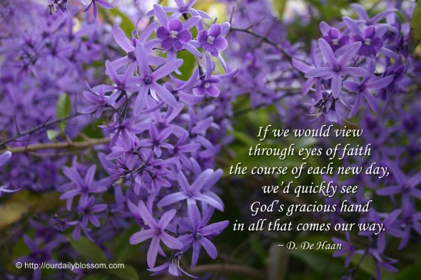 If we would view through eyes of faith the course of each new day, we'd quickly see God's gracious hand in all that comes our way. ~ D. De Haan