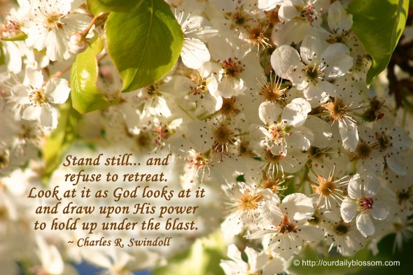 Stand still... and refuse to retreat. Look at it as God looks at it and draw upon His power to hold up under the blast. ~ Charles R. Swindoll