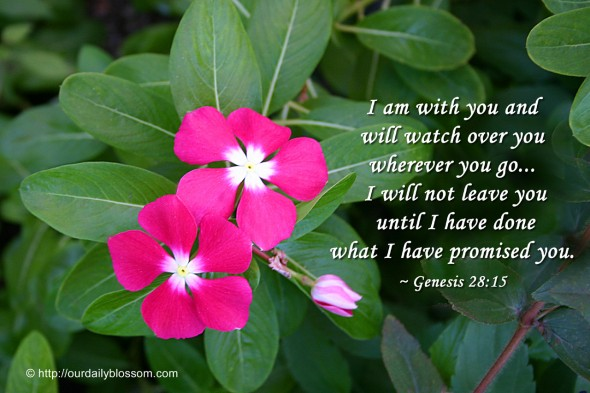 I am with you and will watch over you wherever you go... I will not leave you until I have done what I have promised you. ~ Genesis 28:15