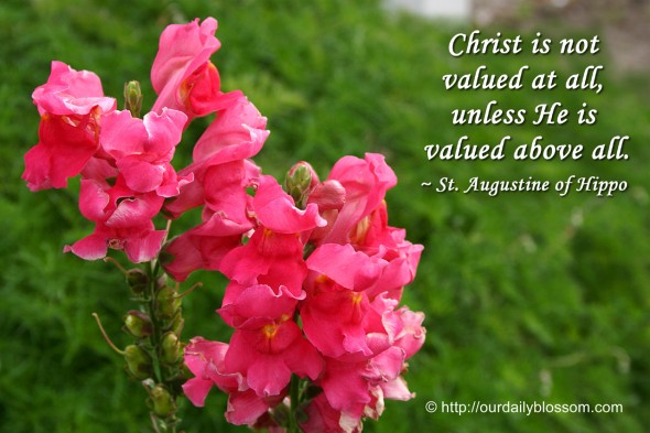 Christ is not valued at all, unless he is valued above all. ~ St. Augustine of Hippo