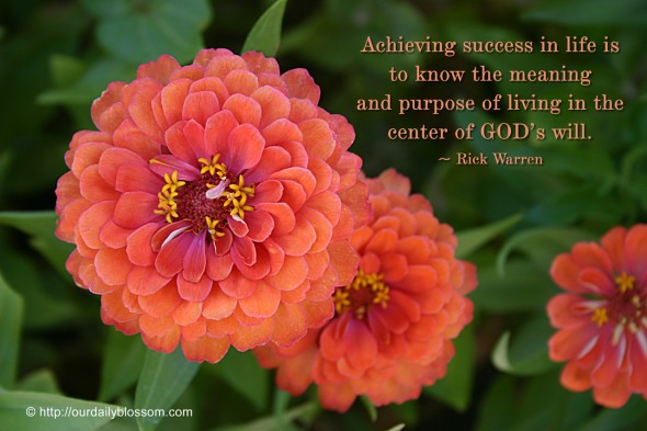 Achieving success in life is to know the meaning and purpose of living in the center of  God's will. ~ Rick Warren