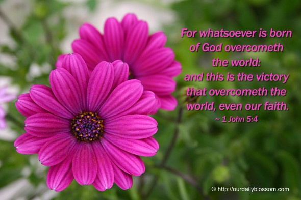 For whatsoever is born of God overcometh the world: and this is the victory that overcometh the world, even our faith. ~ 1 John 5:4