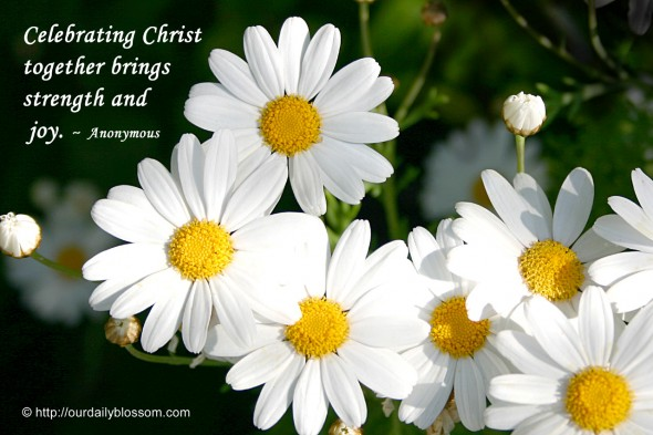 Celebrating Christ together brings strength and joy. ~ Anonymous