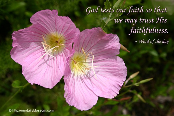 God tests our faith so that we may trust His faithfulness. ~ Word of the day