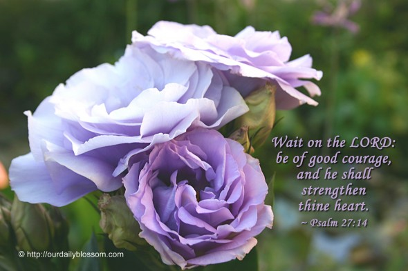 Wait on the LORD: be of good courage, and he shall strengthen thine heart. ~ Psalm 27:14