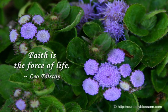 Faith is the force of life. ~ Leo Tolstoy