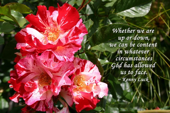 Whether we are up or down, we can be content in whatever circumstances God has allowed us to face. ~ Kenny Luck