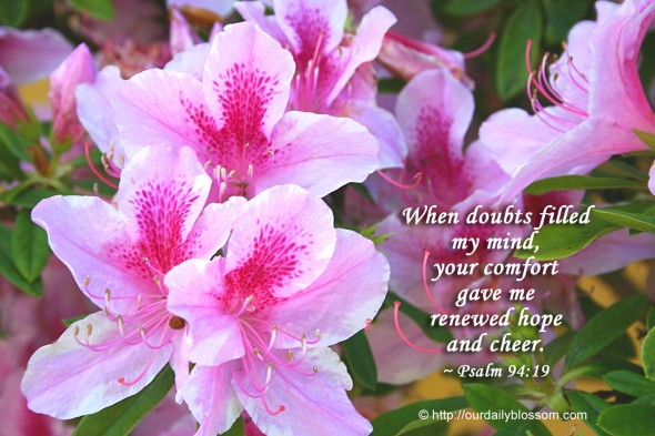 When doubts filled my mind, your comfort gave me renewed hope and cheer. ~ Psalm 94:19