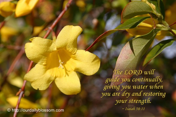 The LORD will guide you continually, giving you water when you are dry and restoring your strength. ~ Isaiah 58:11