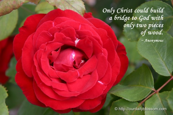 Only Christ could build a bridge to God with only two pieces of wood. ~ Anonymous