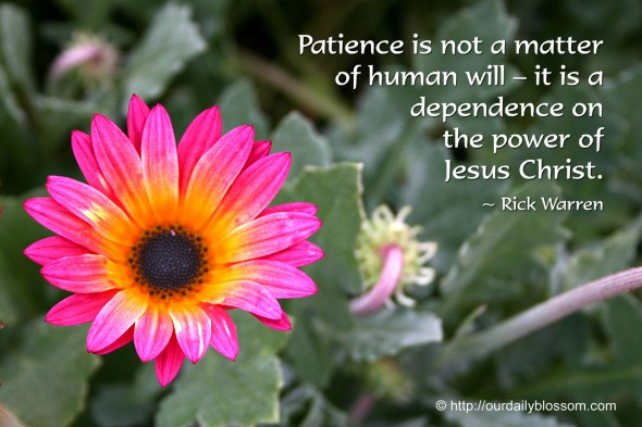 Patience is not a matter of human will – it is a dependence on the power of Jesus Christ. ~ Rick Warren