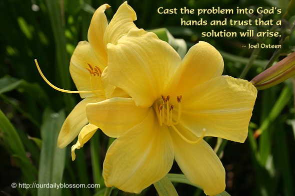 Cast the problem into God's hands and trust that a solution will arise. ~ Joel Osteen
