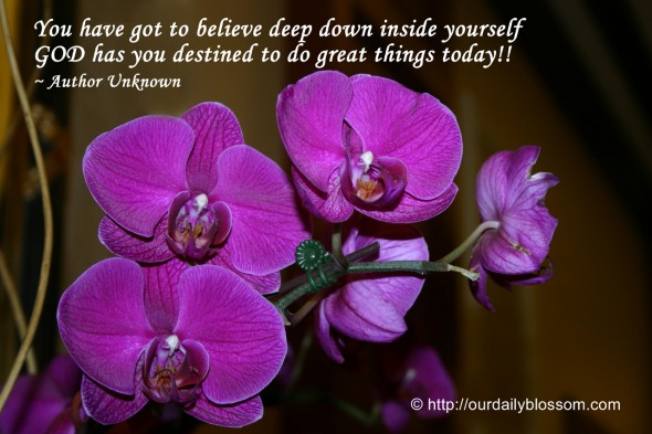 You have to believe deep down inside yourself GOD has you destined to do great things today!! ~ Author Unknown
