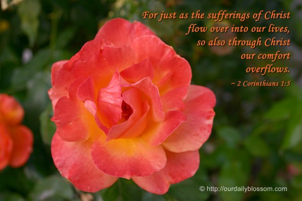For just as the sufferings of Christ flow over into our lives, so also through Christ our comfort overflows. ~ 2 Corinthians 1:5