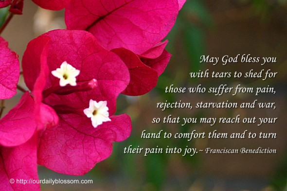 Spiritual Quote Franciscan Benediction Our Daily Blossom