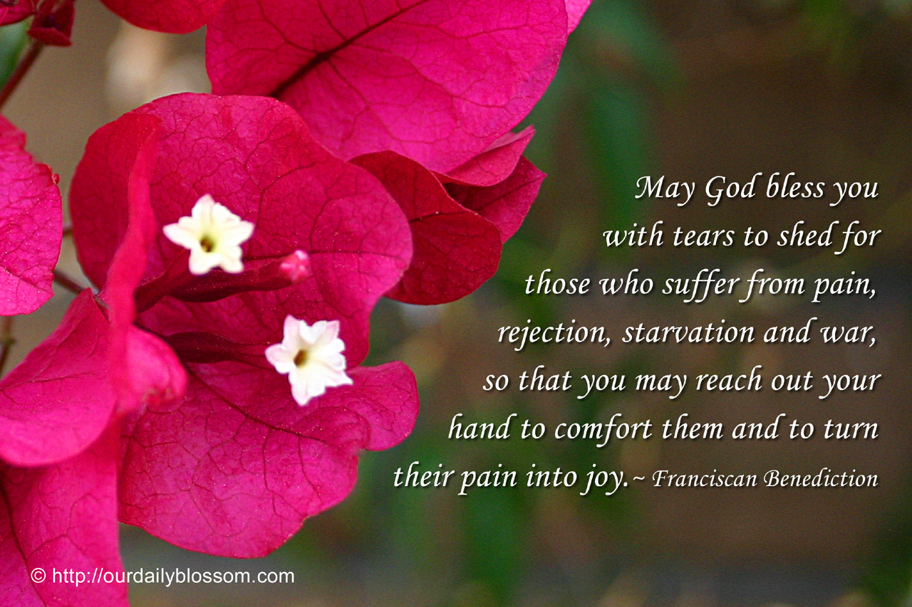You Are A Blessing Quotes Spiritual Quote  Franciscan Benediction  Our Daily Blossom