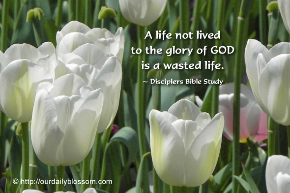 A life not lived to the glory of GOD is a wasted life. ~ Disciplers Bible Study