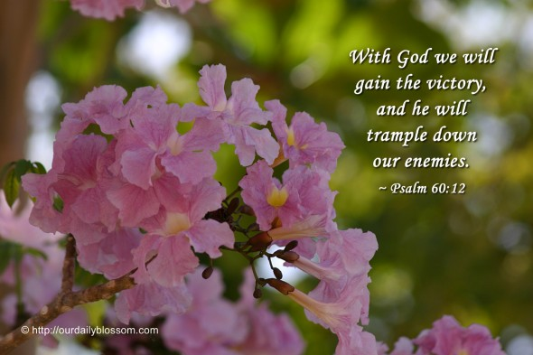 With God we will gain the victory, and he will trample down our enemies. ~ Psalm 60:12