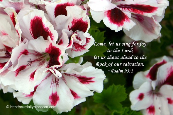Come, let us sing for joy  to the Lord; let us shout aloud to the Rock of our salvation. ~ Psalm 95:1