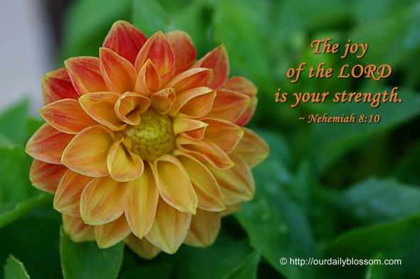 The joy of the LORD is your strength. ~ Nehemiah 8:10