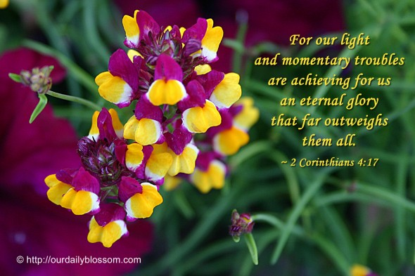 For our light and momentary troubles are achieving for us an eternal glory that far outweighs them all. ~ 2 Corinthians 4:17